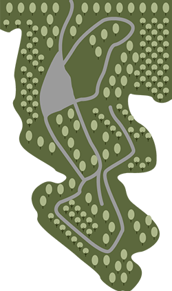 aerial map of the cove on weiss lake